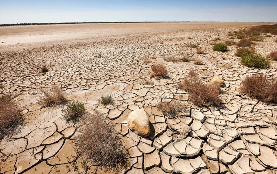 La progressiva desertificazione del mondo